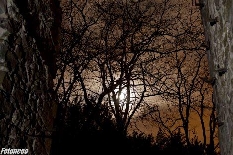 Sol Nocturno